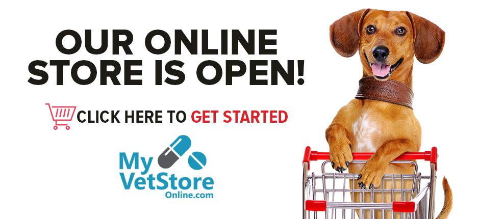 Online-Store-Open-Banner
